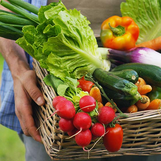 Homem segurando uma cesta com vegetais